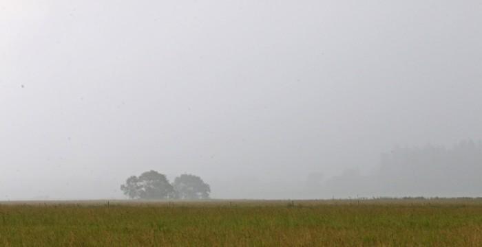 Regn över Kunsgängen