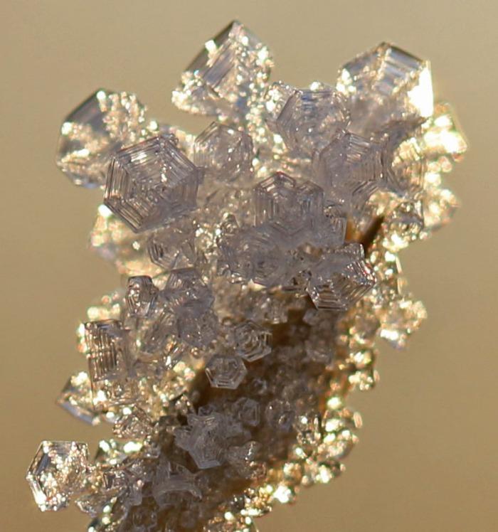 iskristaller på grenspets