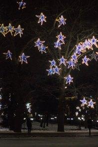 festive 1